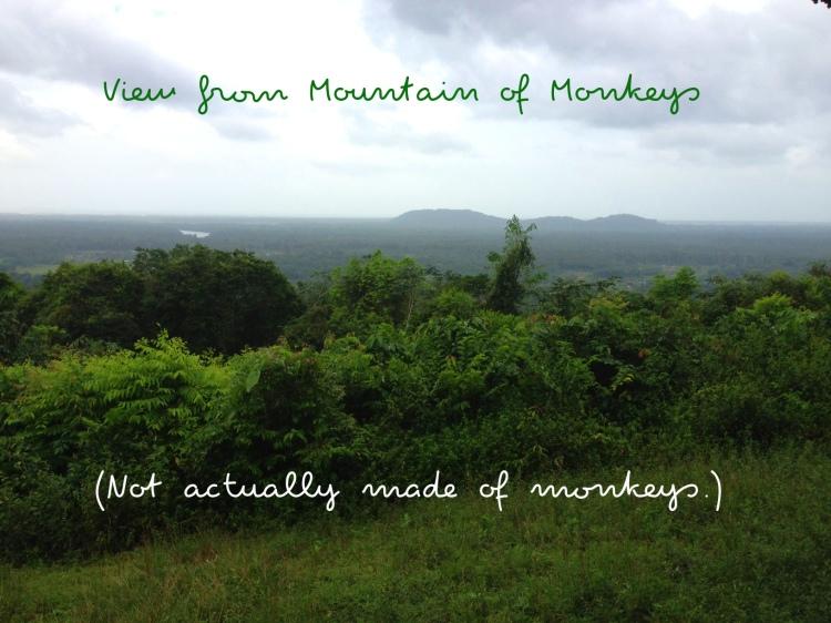 montagne des singes 2