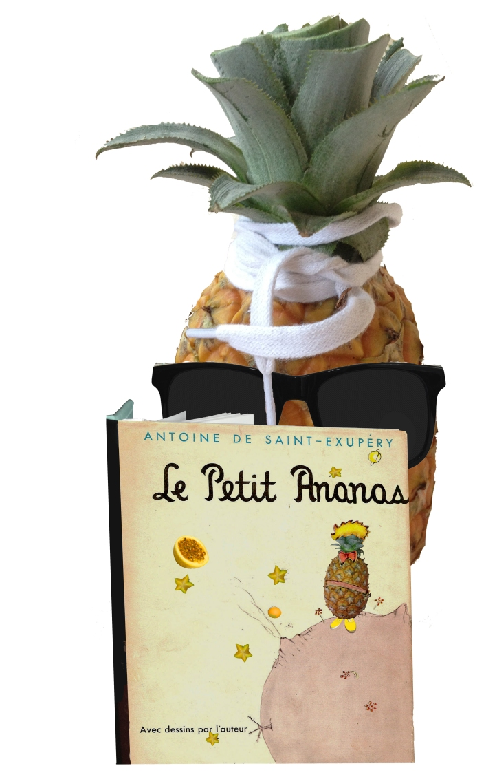 pineapple with book slightly smaller