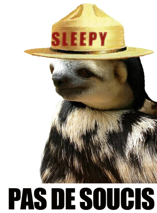 sleepy sloth 4