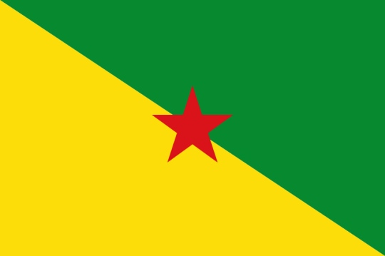 french guiana yellow green flag